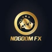NOGOOM FX